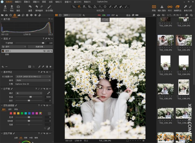 飞思数码图像处理Capture One 20 Pro v13.1.2WIN/MAC中文版